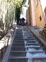 Silver Lake Stairs. Jan 2013