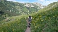 Crested Butte 2008